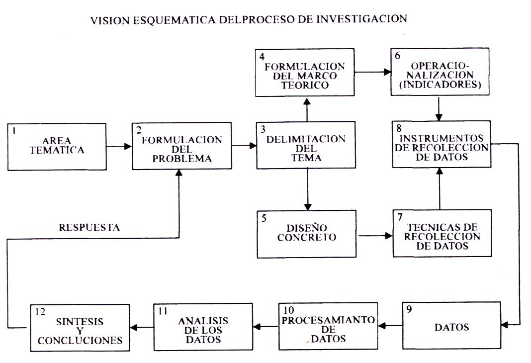 investigacion cientifica importancia: