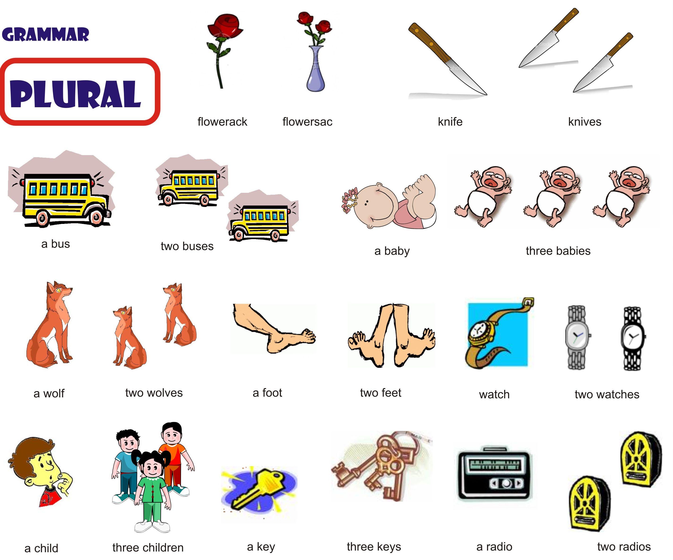 home images unit 2 noun plurals unit 2 noun plurals facebook twitter ...